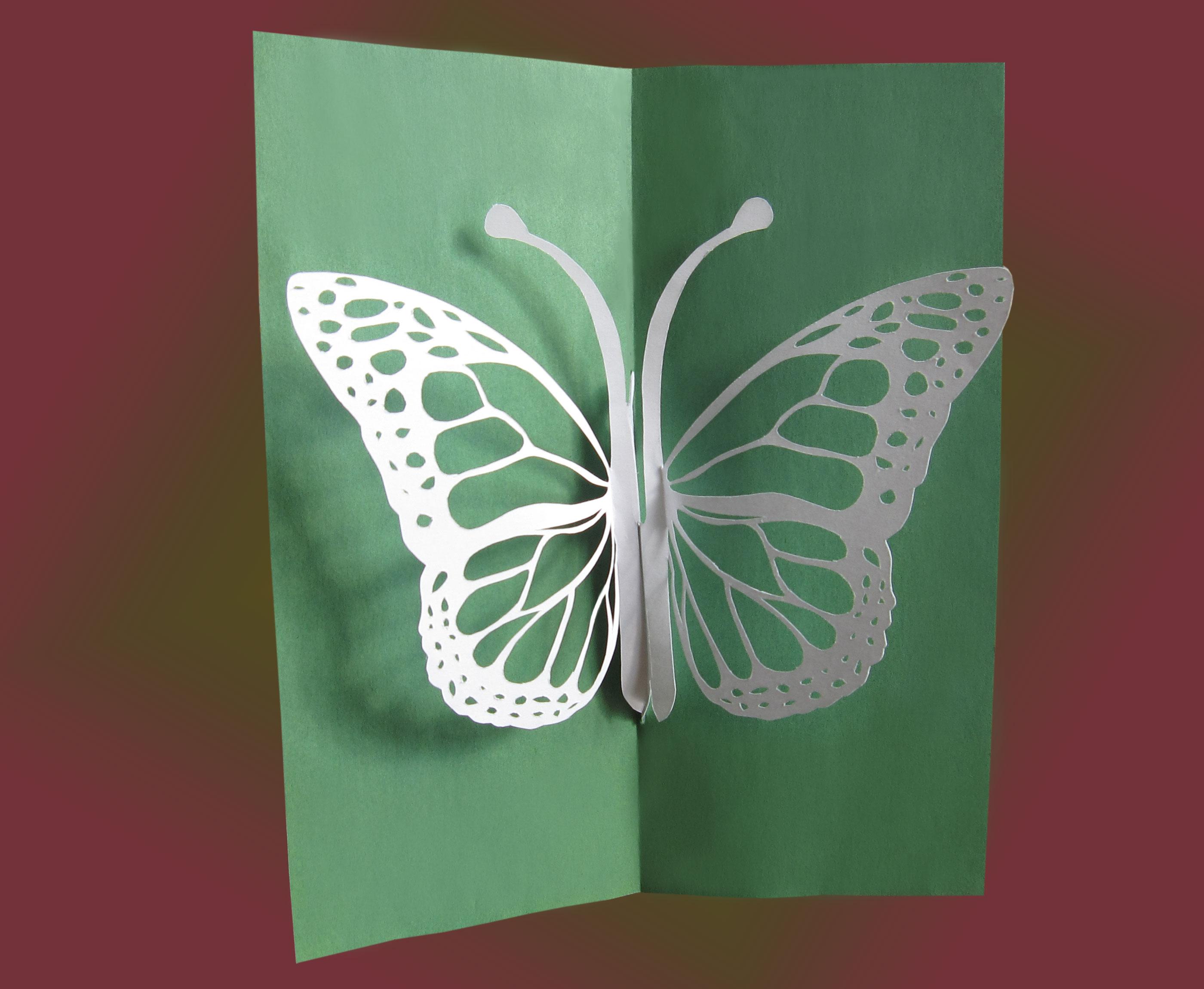 Бабочки из бумаги своими руками (схемы, шаблоны) Остров доброй надежды